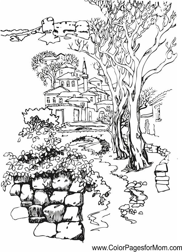 Coloring Page Fig Tree. landscape coloring page 37  Masal evleri Pinterest