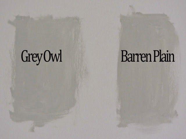Ben Moore Gray Owl Barren Plain Decor Pinterest