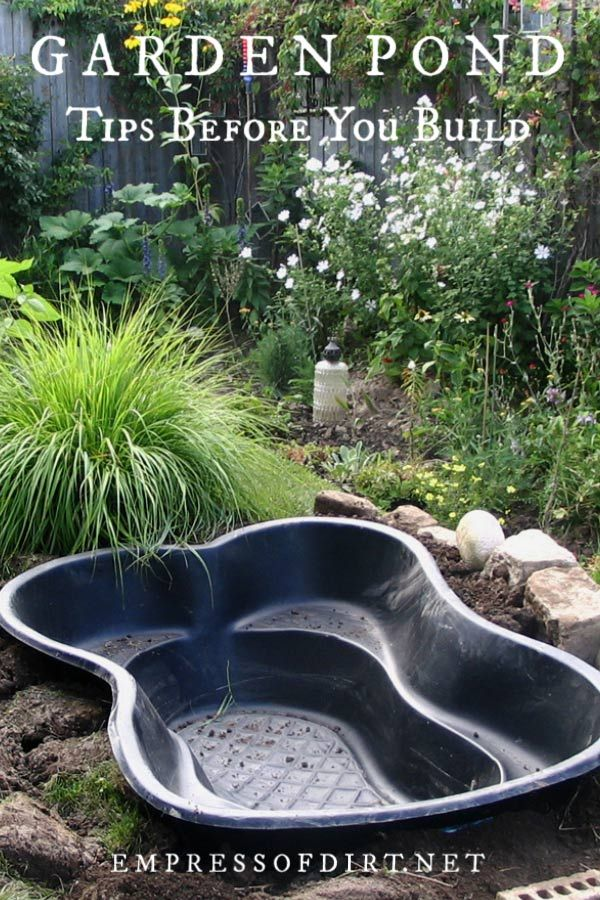 Best Tips for Starting a Small Garden Pond | Small ...