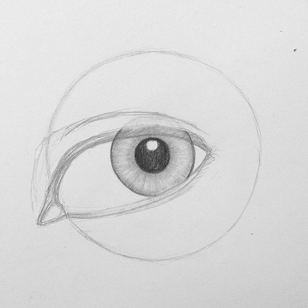 Auge zeichnen - Schritt 6   Augen zeichnen, Zeichnen und ...