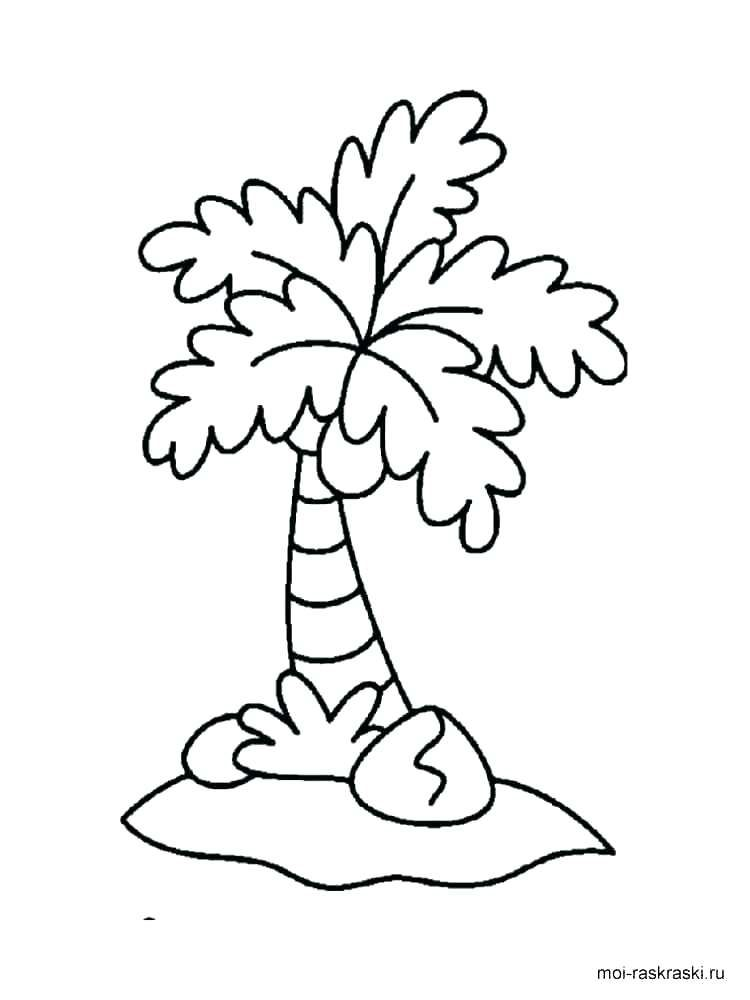 750x1000 Palm Trees Coloring Pages Is Taller Than Palm Tree Coloring Pages Tree Coloring Page Coloring Pages Beach Coloring Pages