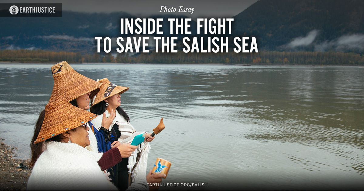 A proposed tar sands pipeline through Western Canada threatens the Salish Sea – rich, abundant border waters shared by the U.S. and Canada -- and the very existence and way of life of Native tribes. This is one pipeline fight you haven't heard about.