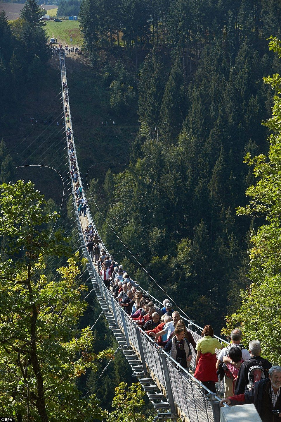 New rope suspension bridge in Germany offers thrills for visitors ...