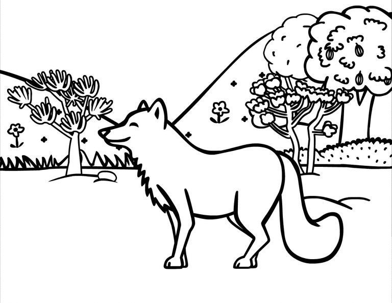 Coyote Coloring Page In 2020 Animal Spirit Guide Coyote Wolf Drawing