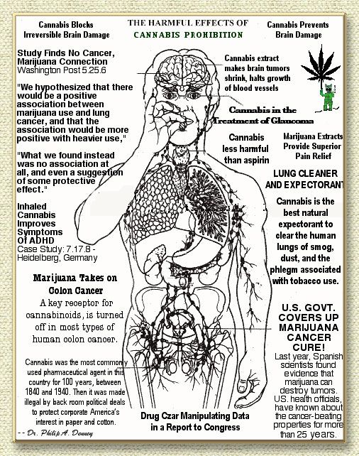 an analysis of the positive effects of marijuana use Medical cannabis, or medical marijuana,  a 2015 meta-analysis found that inhaled medical cannabis was effective in reducing  effects of chronic use may.