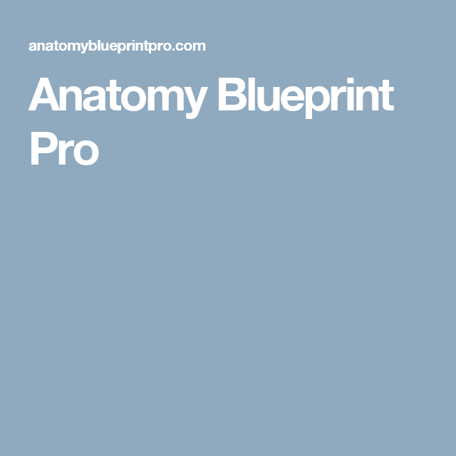 Anatomy blueprint pro biology pinterest anatomy anatomy blueprint pro malvernweather Choice Image