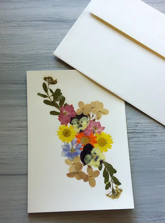 Unique Flower Card Handmade Real Pressed Flower Special Occasion Blank Greeting Card Colorful And Bright Flowers Ferns Frameable Wall Art In 2021 Flower Cards Handmade Flower Cards Pressed Flowers