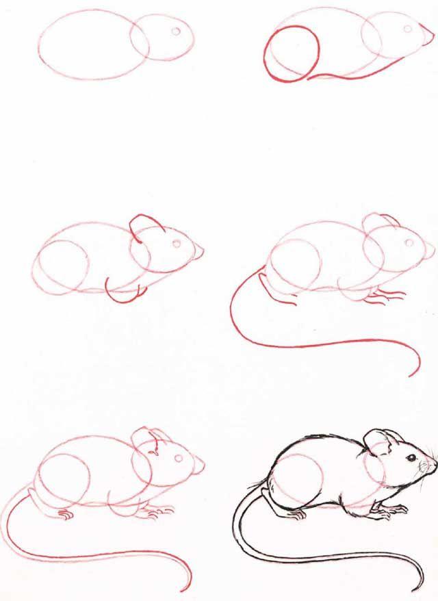 Tuto souris dessin pinterest dessin apprendre dessiner et croquis - Petit quick coloriage ...