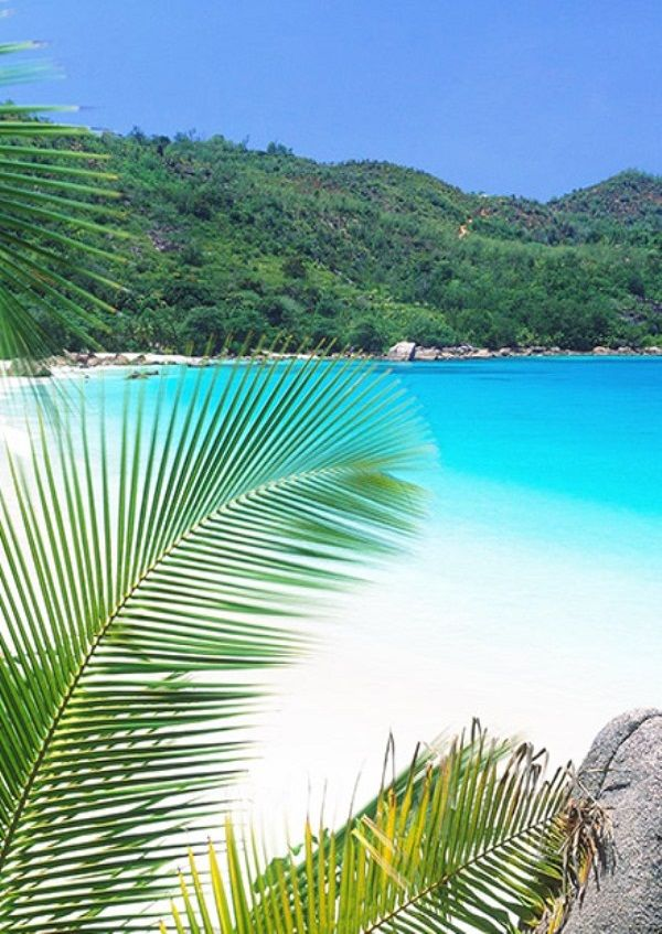 Anse Lazio beach in the northwest of Praslin Island, Seychelles
