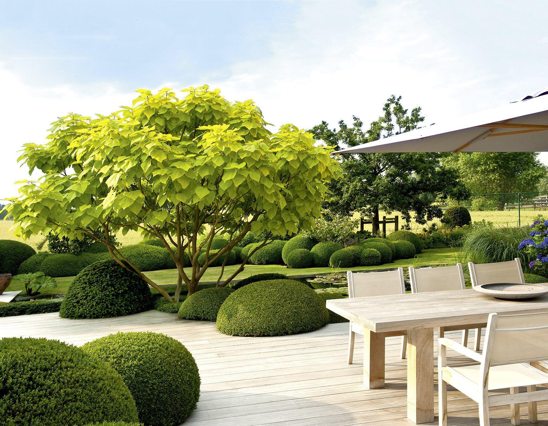 Großartig Design Mit Pflanzen   Moderne Architektur Im Garten Garten  Und Ideenbücher  BJVV: Amazon.