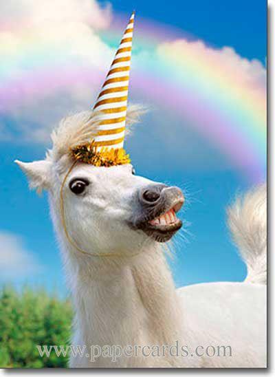 Wiiiiiilber Funny Birthday Cards Unicorn Memes Birthday Humor