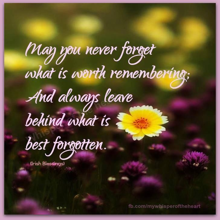 Beautiful Life Quotes And Sayings: Never Forget What Is Worth Remembering Life Quotes Quotes
