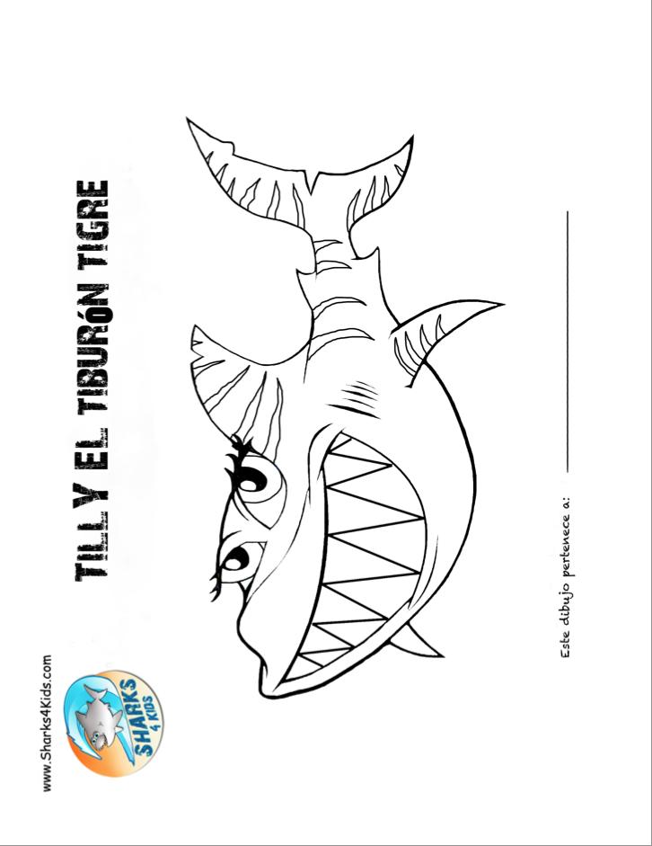 Tiburón tigre hoja para colorear http://sharks4kids.com/additional ...