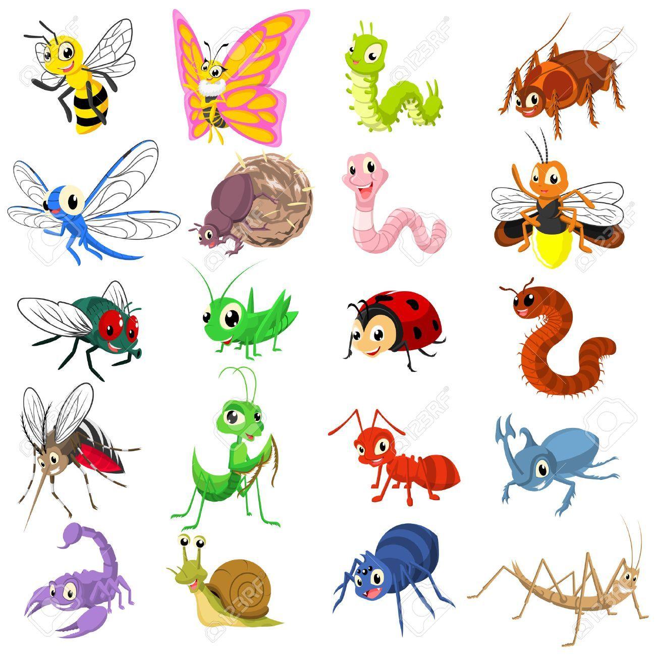 Stock Photo Insectos Animados Dibujos Y Imagenes De Insectos