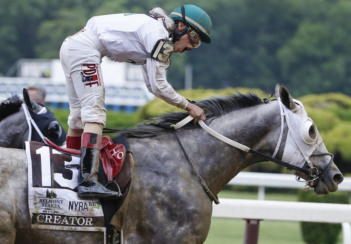 ESPN on Belmont stakes, Thoroughbred horse, Sports pictures