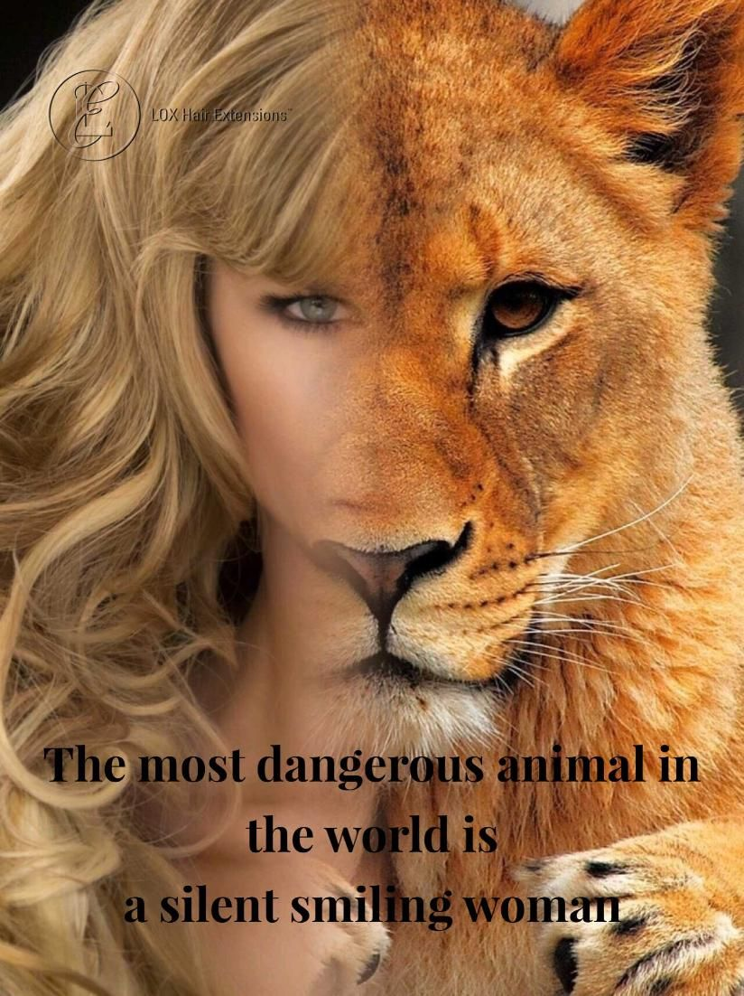 """3d525c114 Happy International Women's Day """"The most dangerous animal in the world is  a silent smiling woman"""" #quotes"""