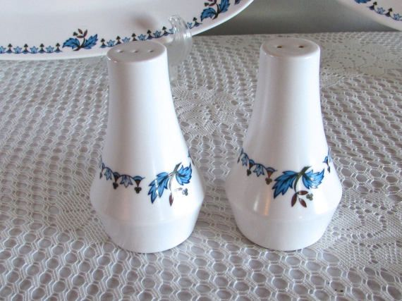 Blue Moon Noritake China Salt and Pepper Set, Noritake Progression China, Every Day Tableware, Blue and Green Floral Pattern Dish Ware #dishware