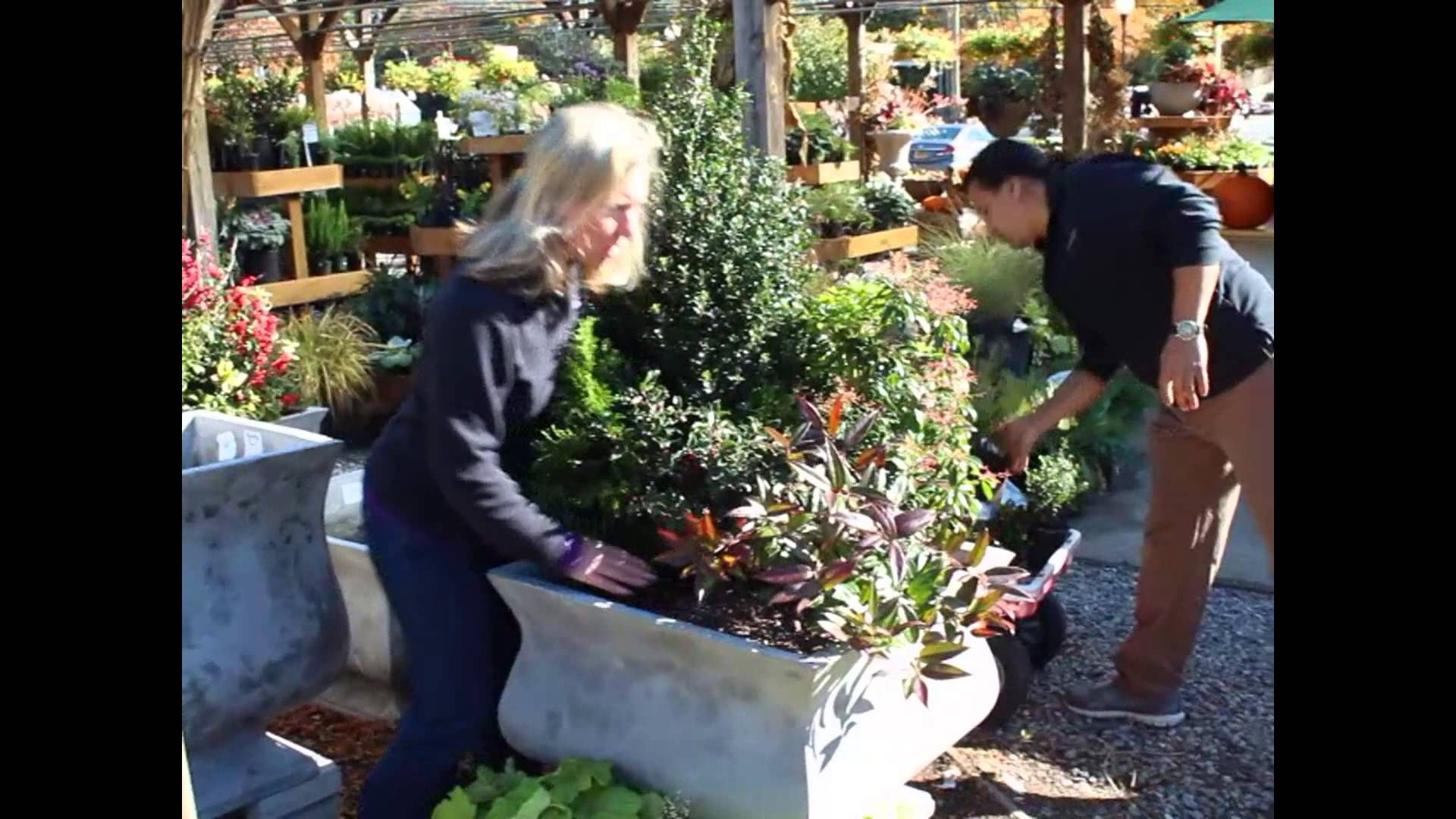 winter container gardens how to video help at nielsen u0027s florist