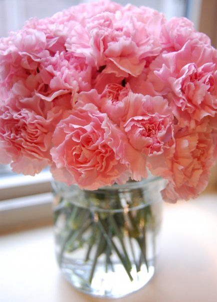 Carnations in mason jars. Part of the centerpieces | Real wedding ...