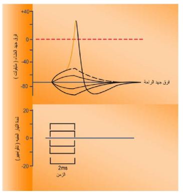 Pin By Chemistry On الحيوية Chart Line Chart Diagram