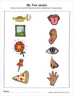 human senses activity sheet for kindergarten kids preschool crafts five senses preschool. Black Bedroom Furniture Sets. Home Design Ideas
