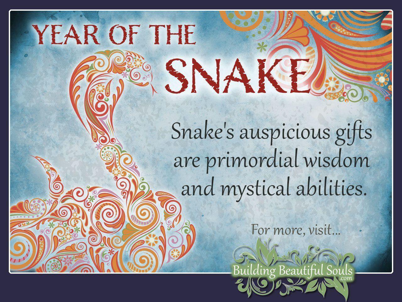 Chinese Zodiac Snake Year Of The Snake Chinese Zodiac Chinese Zodiac Snake Year Of The Snake Snake Zodiac