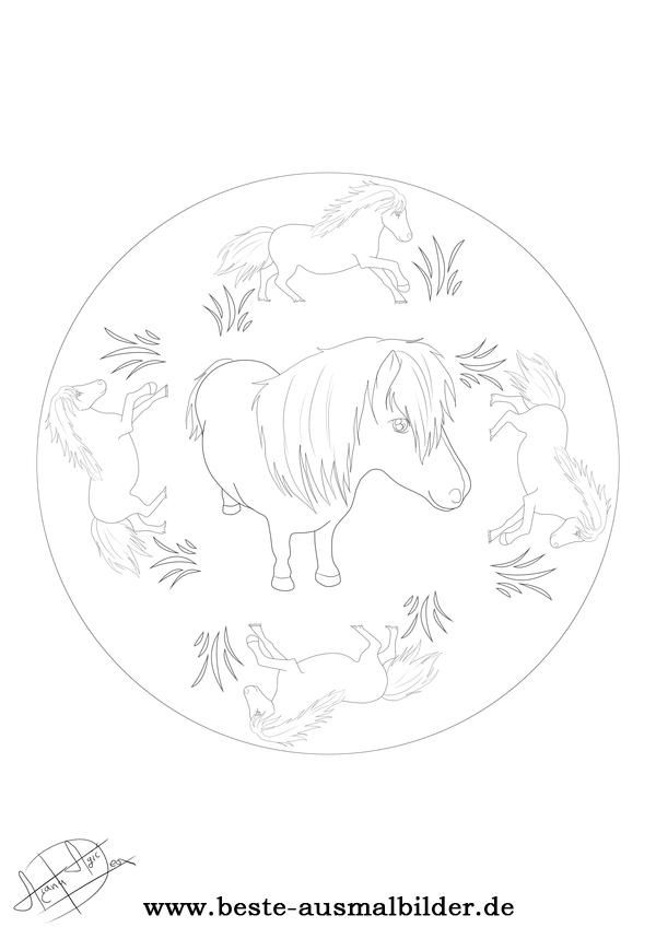 Mandala Pony Ausmalbilder Mandalas Ausmalen