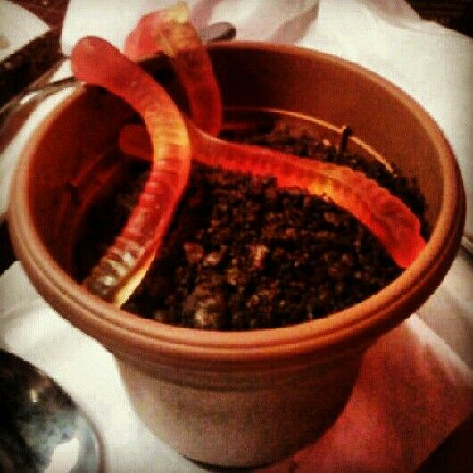 DIY ; crafy foods ; flower pot, pudding, crushed oreos, and gummy worms on top. For the kiddos!