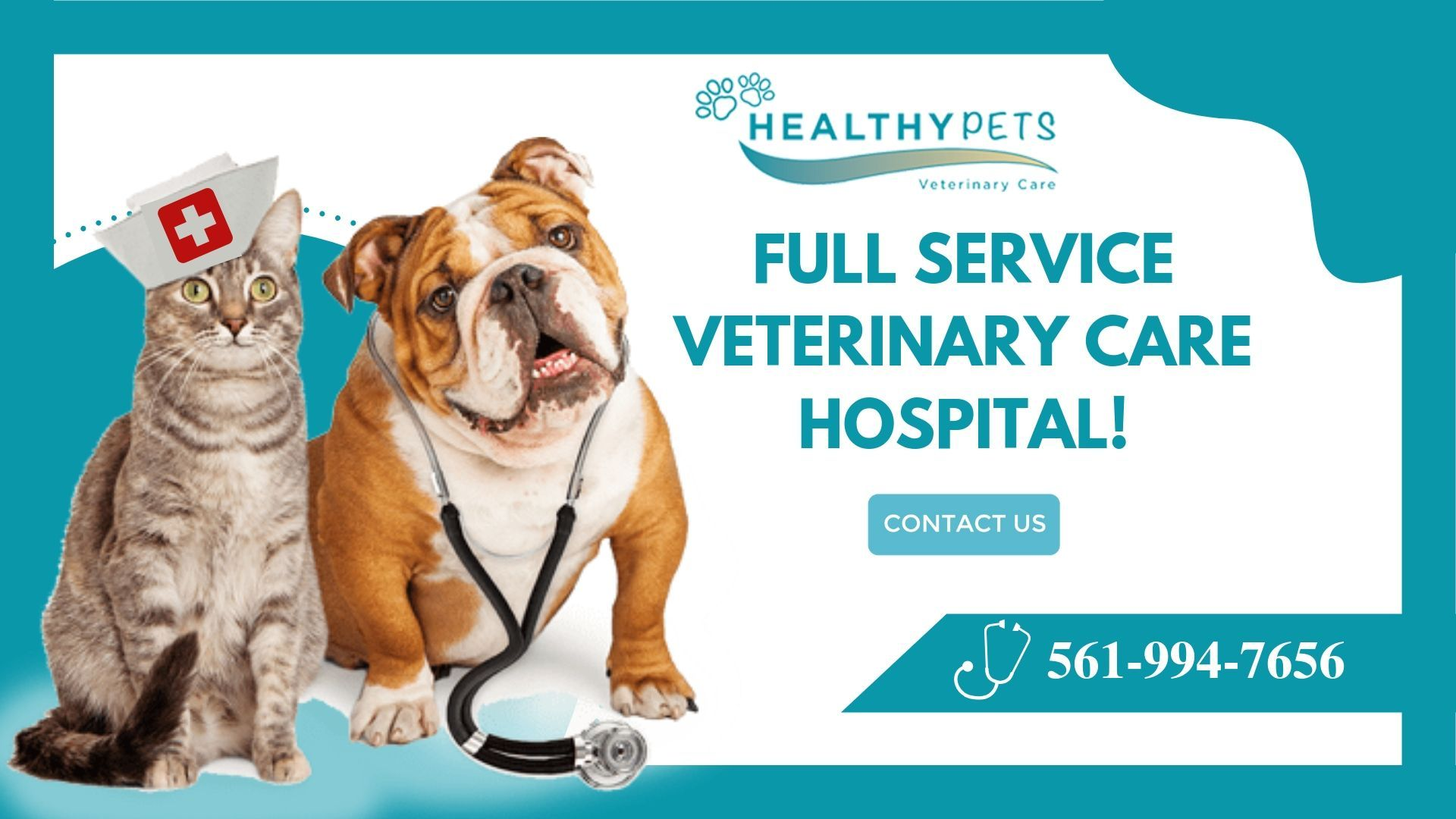 Boca Animal Hospital With Images Veterinary Care Healthy Pets Animal Hospital