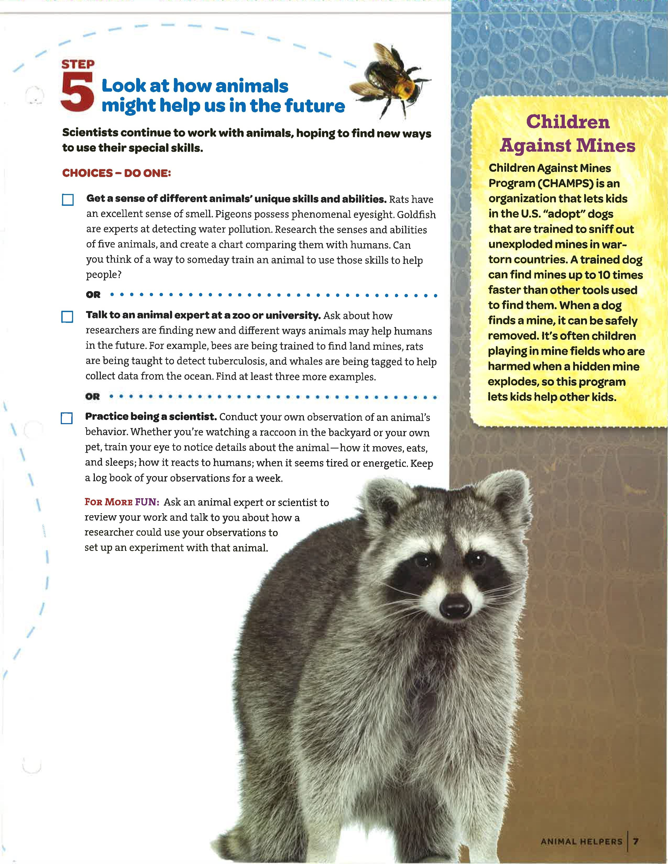 step 5 cadette media animal helpers badge pinterest