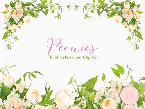 watercolor ivory florals wedding floral clip art by magicalstudio