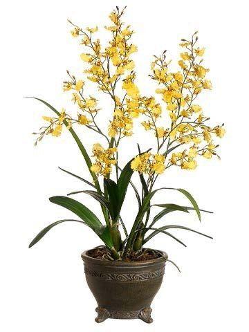 Tori Home Oncidium Orchid In Oval Pot Oncidium Orchids Silk Orchids Arrangements Orchid Flower Arrangements