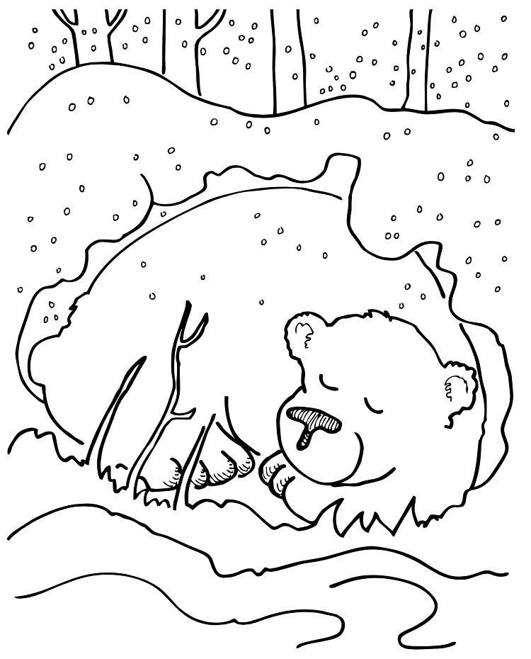 Winter Bear Coloring Pages  Bear coloring pages, Coloring pages