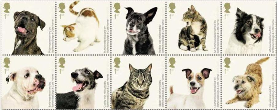 Battersea Dogs Cats Home 150th Anniversary Battersea Dogs Cat Stamp Dogs