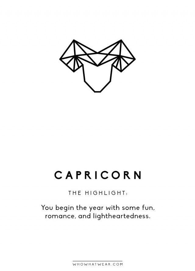what kind of capricorn am i