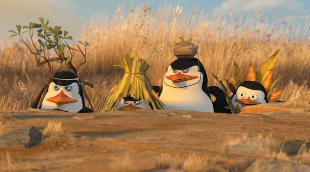 This Penguins Of Madagascar Hilarious Wallpapers Wallpaper, HD Movies 4K Wallpapers, Images, Photos and Background