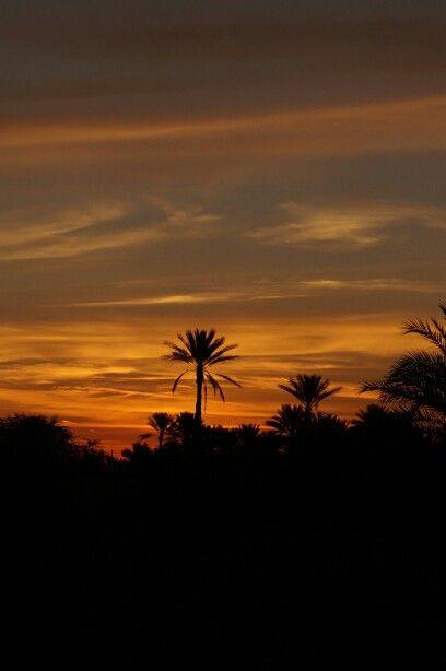 قبل شروق الشمس Sunrise Celestial Sunset
