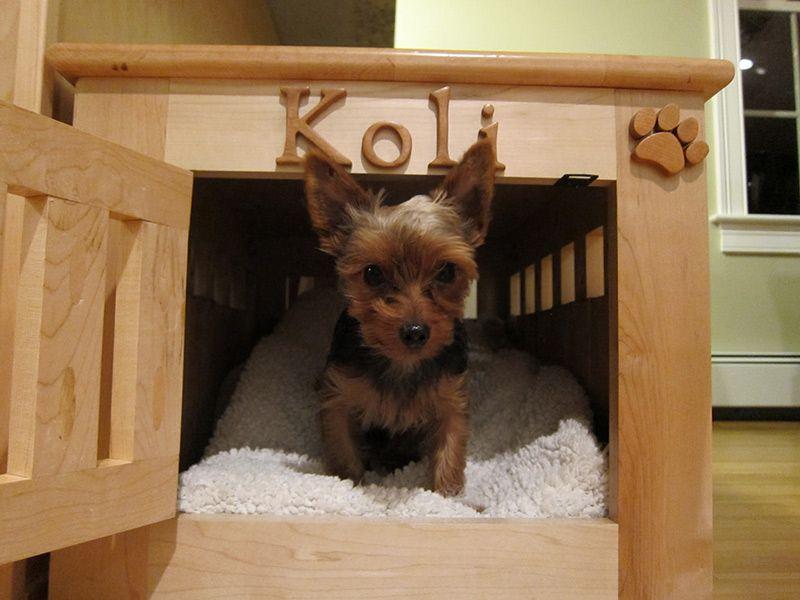 cage pour chien fait maison diy pour animaux pinterest cage pour chien fait maison et. Black Bedroom Furniture Sets. Home Design Ideas
