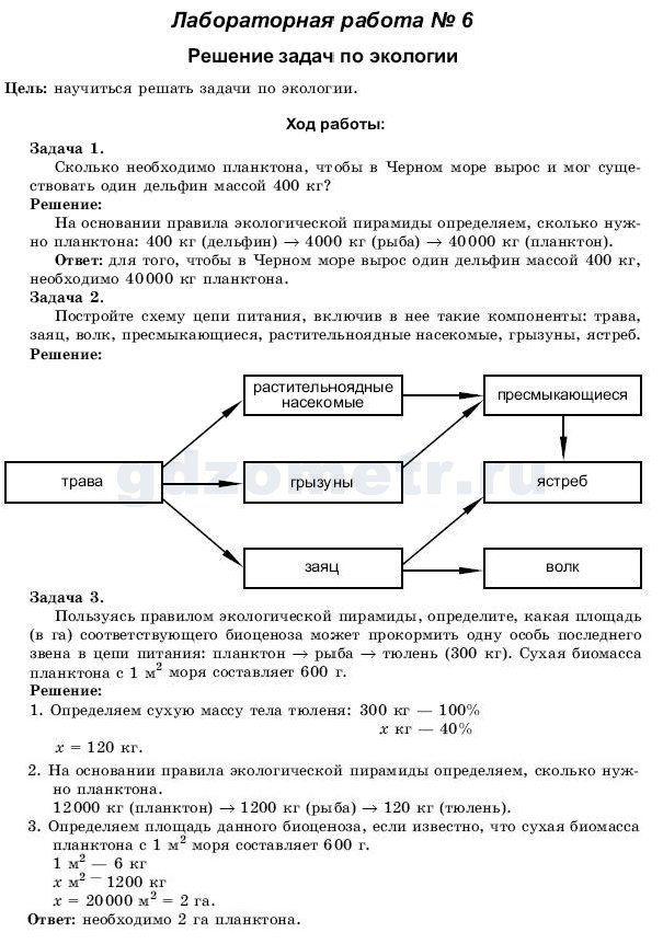 Спиши русский язык 7 класс.ру