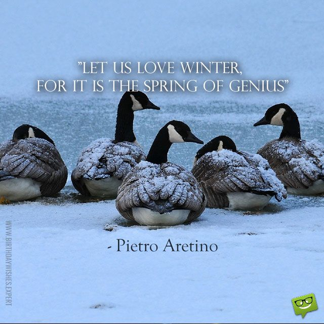 Charmant Let Us Love Winter, For It Is The Spring Of Genius U2013 Pietro Aretino