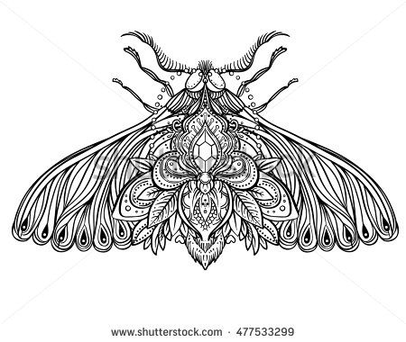 Black and white decorative vector illustration of moth