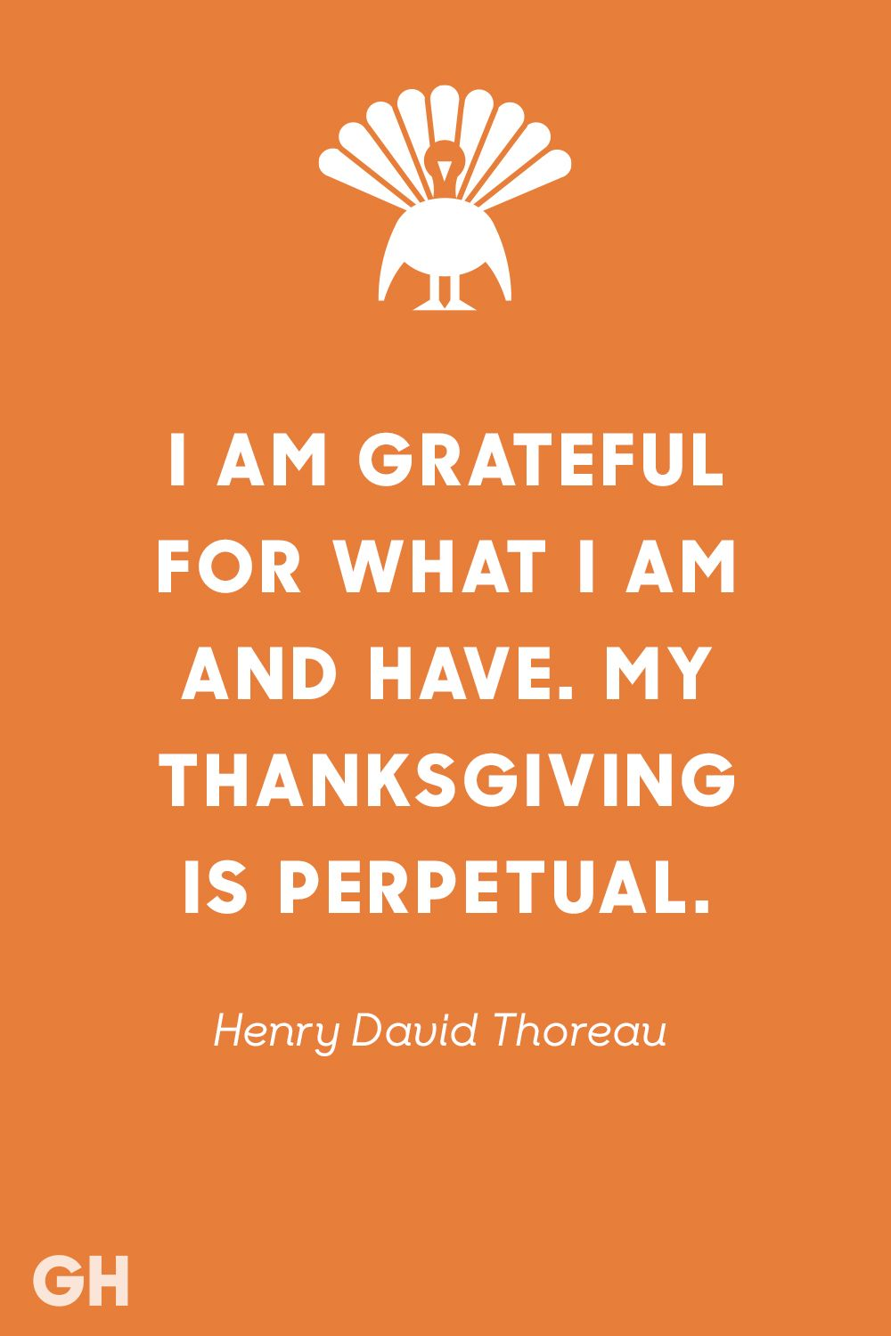 22 Best Thanksgiving Quotes To Share At Your Table Quotes