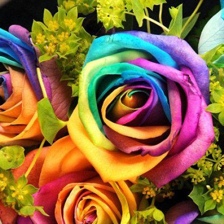 HOME DZINE Craft Ideas | How to make rainbow roses #rainbowroses