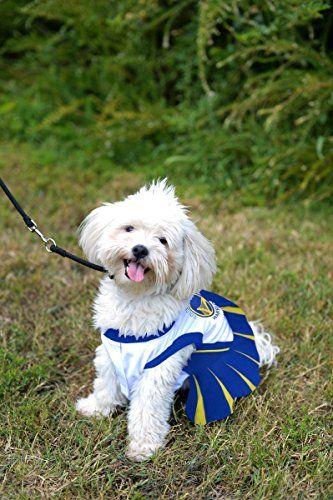 timeless design 626e5 8374f Pets First NBA Golden State Warriors Dog Cheerleader Dress ...
