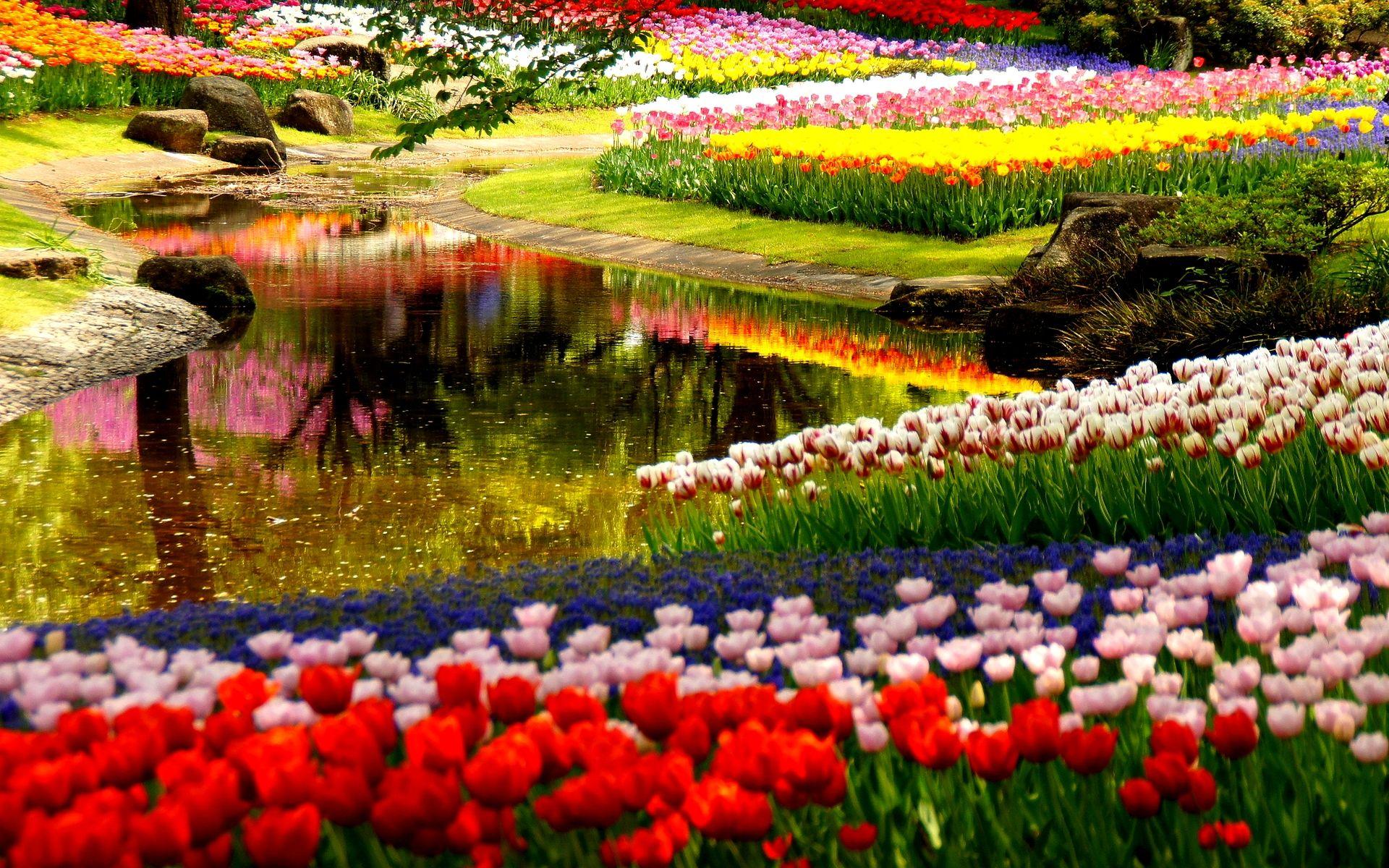 The Garden Of Your Dreams Is Within Your Reach   Read On! U003eu003eu003e