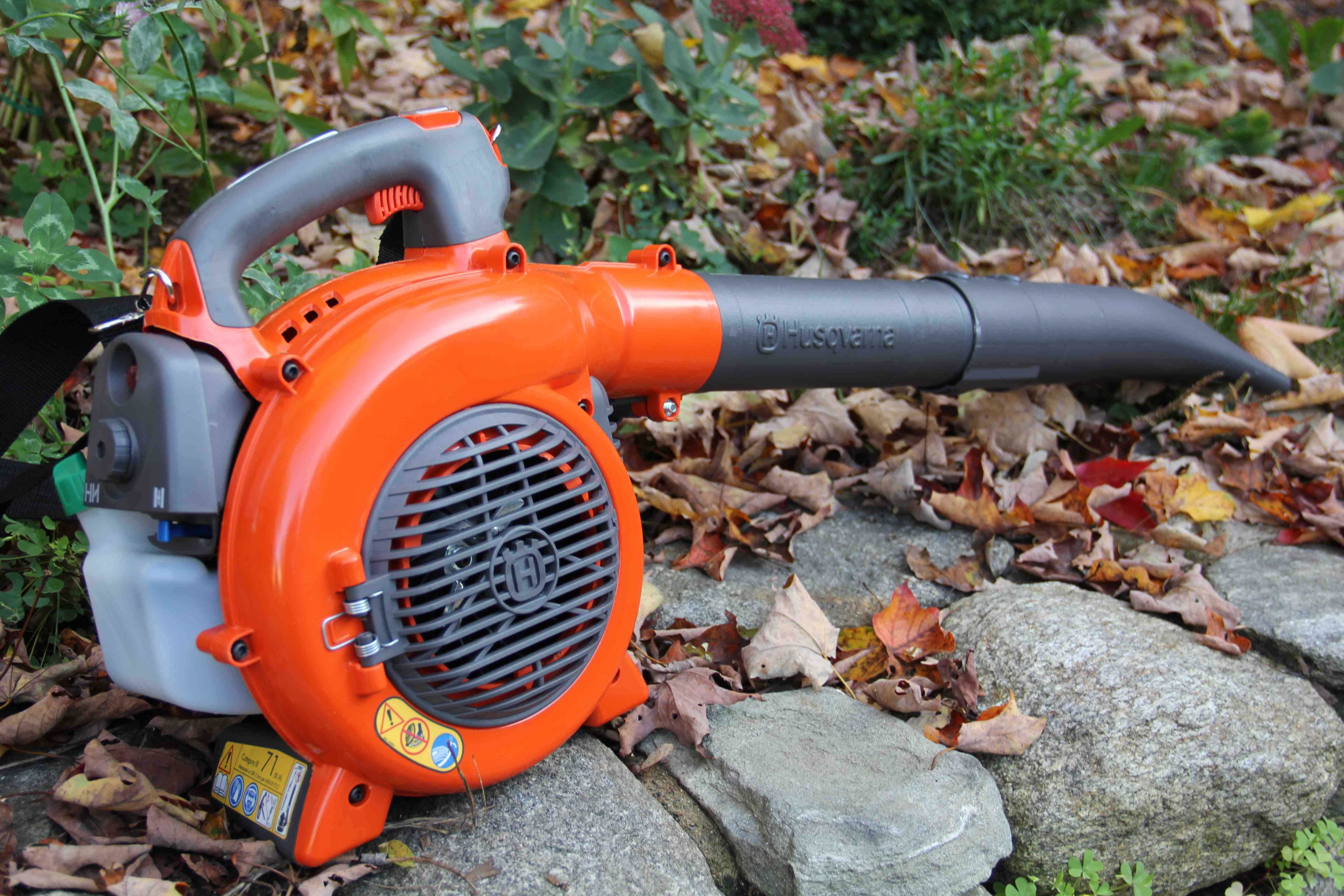 A Guide to the Best Leaf Vacuums for a Clean Yard Yard