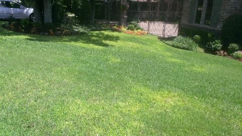 Brown patch disease in a lawn located in colleyville texas lawn brown patch disease in a lawn located in colleyville texas publicscrutiny Image collections