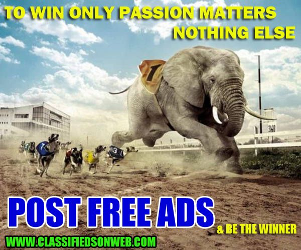 Be Winner...Dont waste money on paid ads....Just post free ads on www.classifiedsonweb.com for better response from customers