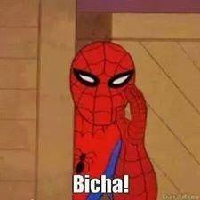 7d833eaa957b9ee0fca67ceda4884af1 bicha homem aranha hahahaha carai pinterest homem aranha,Meme Homem Aranha