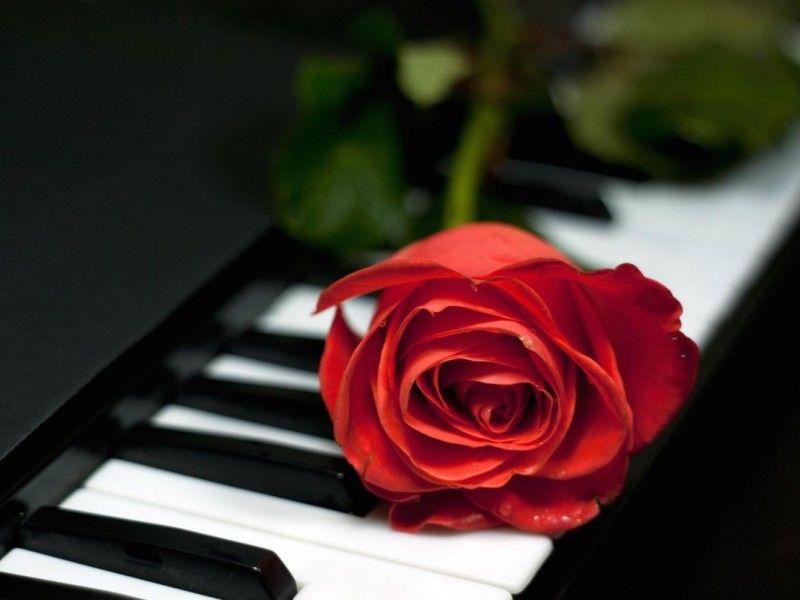خلفيات شاشة رومانسية Romance Wallpaper Hd 1080p Tecnologis